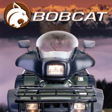 Bobcat™ ATV Fairing