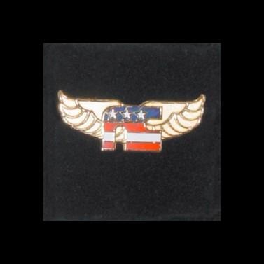National Cycle Logo Pin