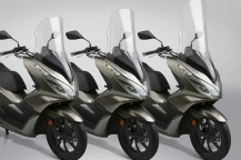 New Replacement Screens for the 2019 Honda® PCX150