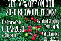 50% Off on End-of Year Blowout Products!
