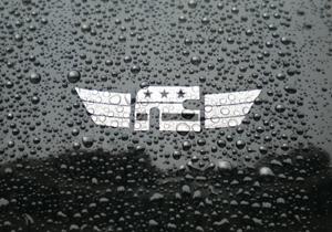 Rain Beading